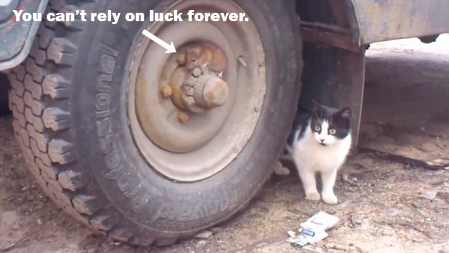 mouse is hiding from confused cat with caption you can't rely on luck forever