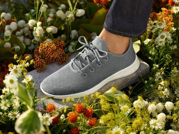 Allbirds Weaves its Brand-building Expertise into SEO and Google Ads